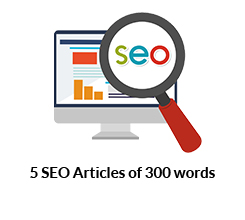 5 SEO Articles of 300 words each